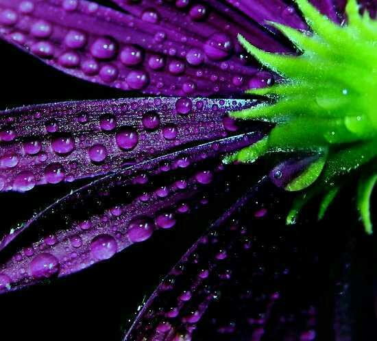 Random Pretty Pictures Bright Contrasting Colors Design